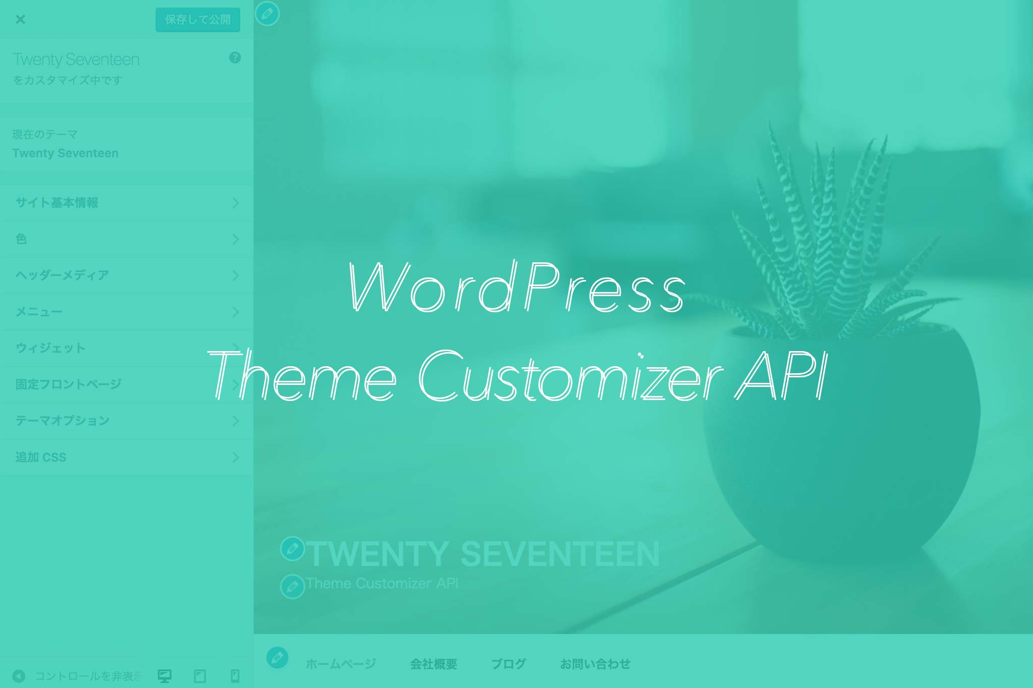 catch-theme-customizer-api-add-section