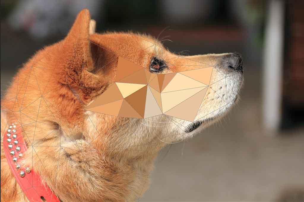 ポリゴン犬3