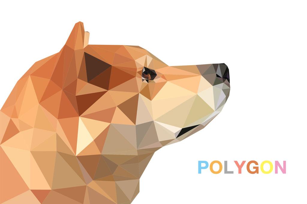 polygonDogg